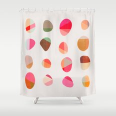 Painted Pebbles 5 Shower Curtain