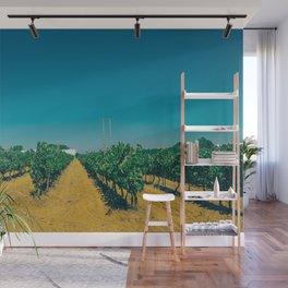 Beautiful Vineyard Wall Mural