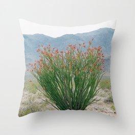 Ocotillo Plant (Anza Borrego Desert, California) Throw Pillow