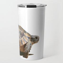 Sideview of A Walking Turkish Tortoise Isolated Travel Mug