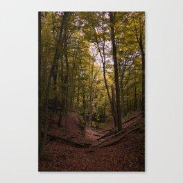 MI Fall Forest Canvas Print