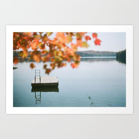 lake side view  Art Print