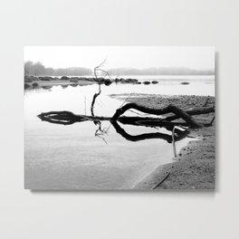 Stillness Metal Print
