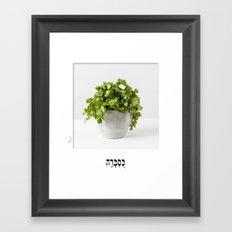 coriander herb poster with hebrew letters for the kitchen Framed Art Print