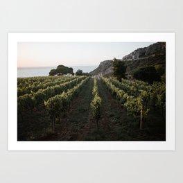 tuscany vineyard Art Print