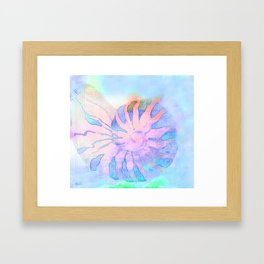 NAUTILUS CONCH SEA SHELL IMPRESSION Framed Art Print