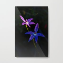Orchid flower with expression Metal Print