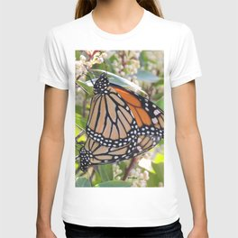 Love in the Air - Monarch Style T-shirt
