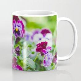 Spring Garden Pansies Coffee Mug