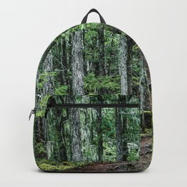 Nature Landscape Forest Trail Backpack
