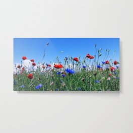 poppy flower no12 Metal Print