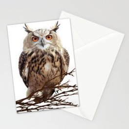 WILDERNESS BROWN OWL IN WHITE Stationery Cards