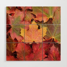Yellow, green and red maple leaves Wood Wall Art