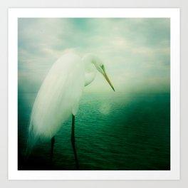 White Egret Art Print
