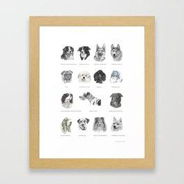 Dog poster Framed Art Print
