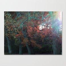 Fallwood Canvas Print