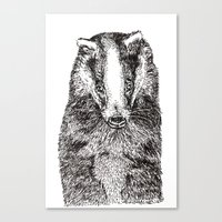 badger Canvas Prints featuring Badger by Meredith Mackworth-Praed