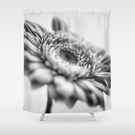 Gerbera 6 Shower Curtain