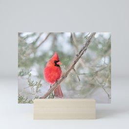 Winter's End Cardinal Mini Art Print