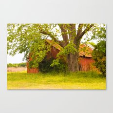 Red Idle Canvas Print
