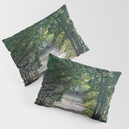 Country Road Pillow Sham