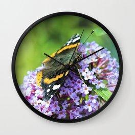 Butterfly VI Wall Clock