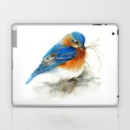 Eastern Bluebird Nesting Laptop & iPad Skin