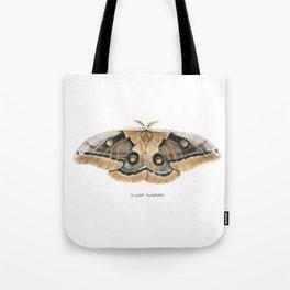Oculea Silkmoth (Antheraea oculea) Tote Bag
