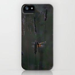 night's lodging iPhone Case
