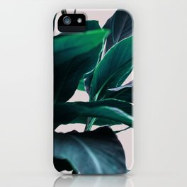 Leaves 4 iPhone Case