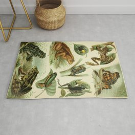 Frogs And Toads Rug