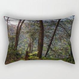 2017-10-02 Rectangular Pillow