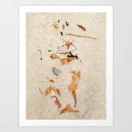 Sea Stuff Art Print