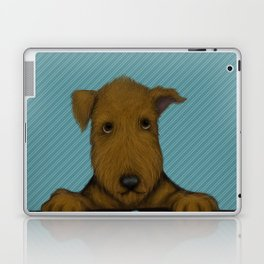 Blue Augie Laptop & iPad Skin