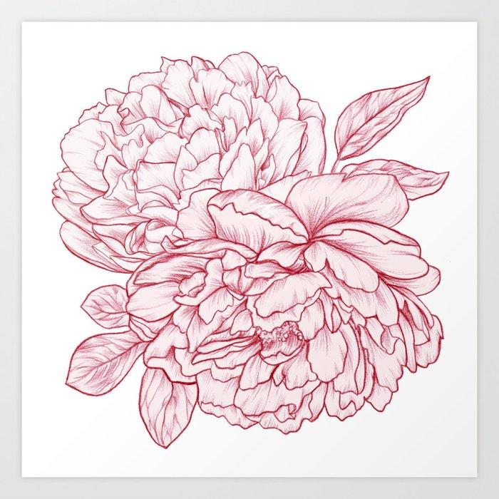 Pink Peony Kunstdrucke