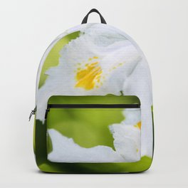 Japanese Roof Iris Backpack