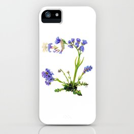 Statice Flower Dissection iPhone Case