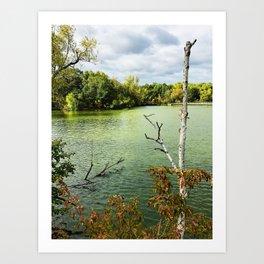 Mossy Waters Art Print