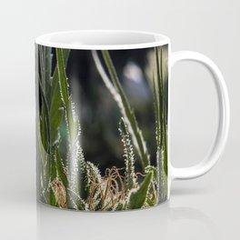 Red Hash Coffee Mug