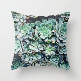 Plants, Succulent, Nature, Modern art, Art, Minimal, Wall art Throw Pillow