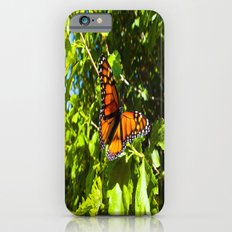 Monarch Butterfly iPhone 6s Slim Case