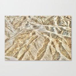 Death Valley desert Canvas Print
