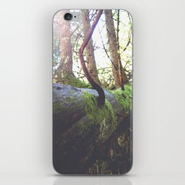 Trees Growing out of Trees iPhone Skin