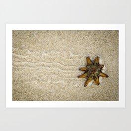 Starfish on the Move Art Print