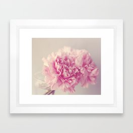 Dreamy Carnations  Framed Art Print