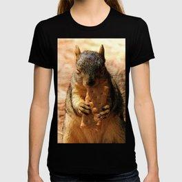 Contented Squirrel. © J. Montague. T-shirt