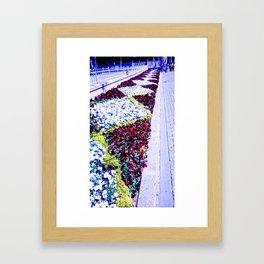 The diversity of color. Framed Art Print