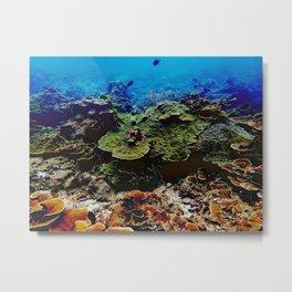 coral reef landscape Metal Print