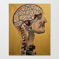 Human Brain  Canvas Print
