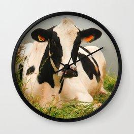 Holstein cow facing camera Wall Clock